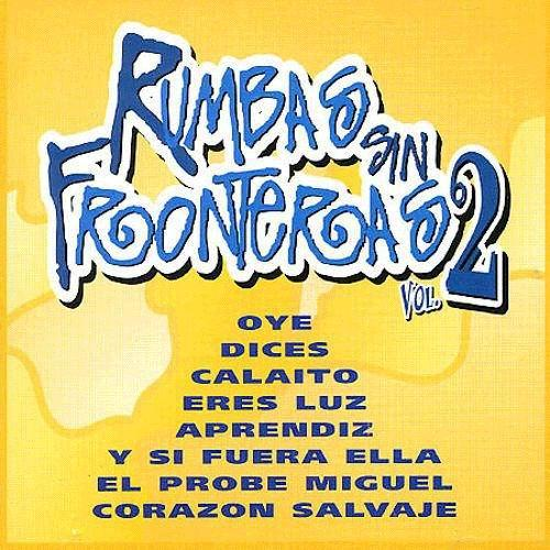 Rumbas sin fronteras vol. 2. CD