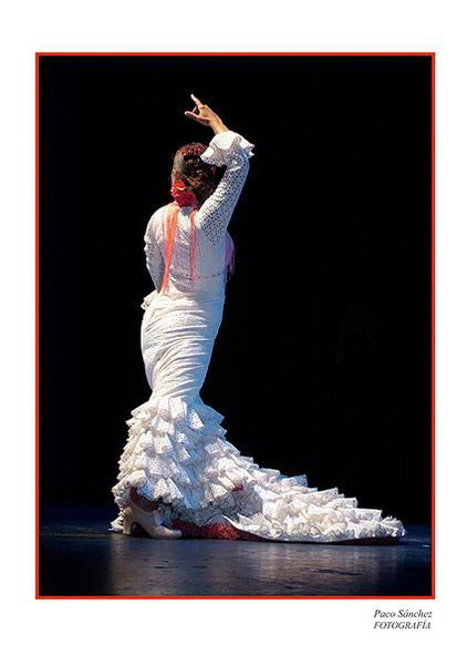 The photografic prints of Flamenco 05