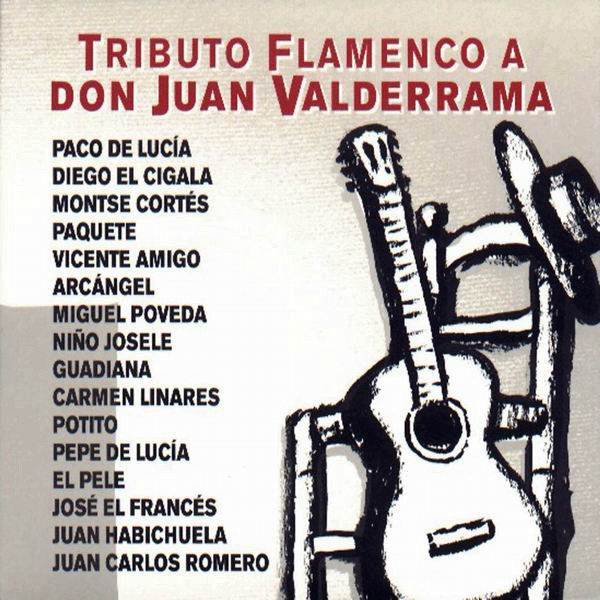 tributo flamenco a don juan valderrama