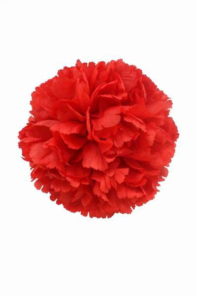 Red Giant Carnation. 16cm
