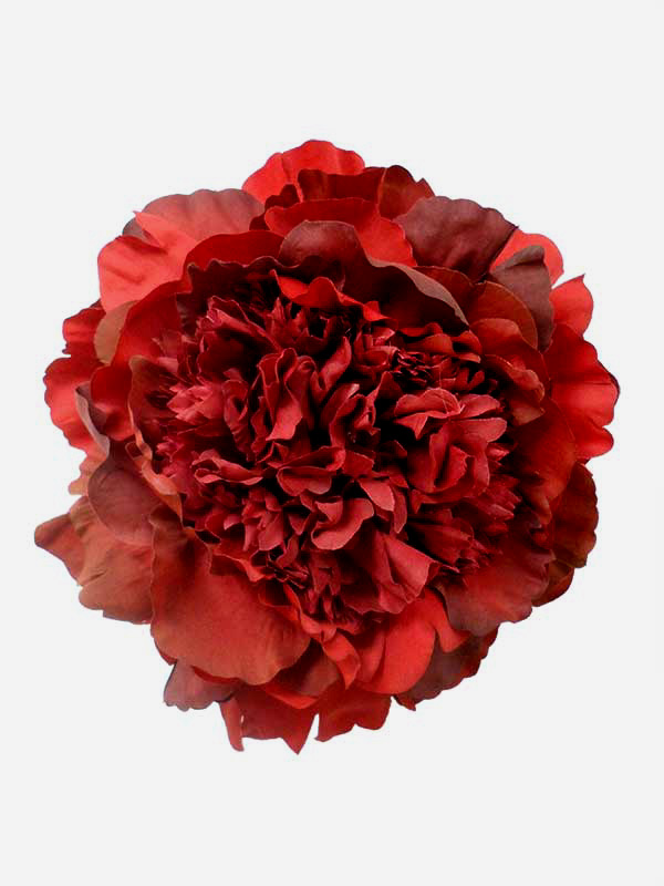 Flamenco Flower Peony in Red Shades. 16cm