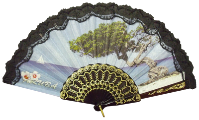 Plastic fan with lace